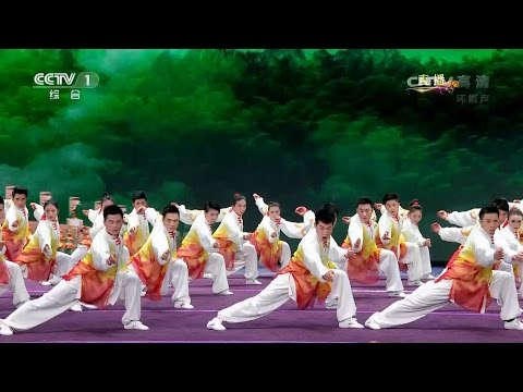 Chinese Wushu Champion Team - 2017 Chinese New Year - CCTV Spring Festival Gala