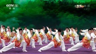 Chinese Wushu Champion Team - 2017 Chinese New Year - CCTV Spring Festival Gala