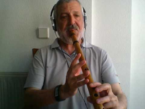 Despacito  - Flute - (Luis Fonsi   Ft  Daddy Yankee) - Quenacho (Quena)