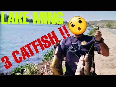 Hooking Up On 3 Catfish At Lake Ming !!