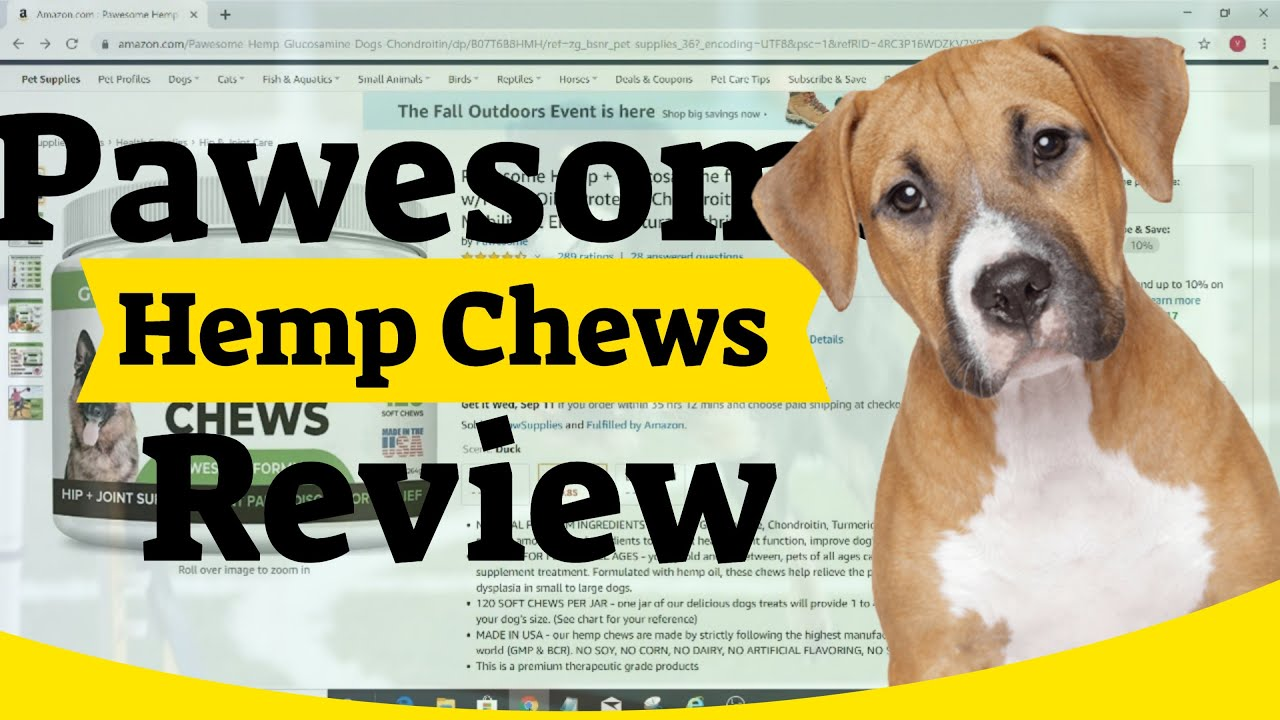 Pawesome Hemp Chews Review | Best Hemp Chews For Dogs | My