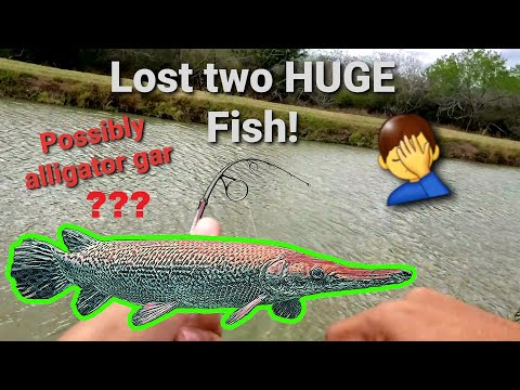 Lost Two HUGE Fish! Possible Alligator Gar | Brownsville, TX