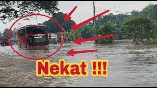 Aksi NEKAT 👍 Bus SHD Medali Emas  Menerjang Banjir 👍👍