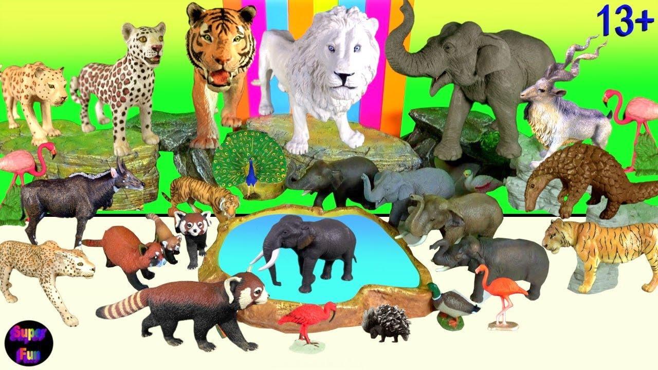 Big Cat Week -  Lion Bengal Tiger Indian Leopard Elephant Red Panda 13+