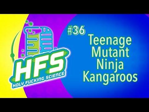 HFS Podcast #36 - Double-Muscle Ninja Kangaroo Army