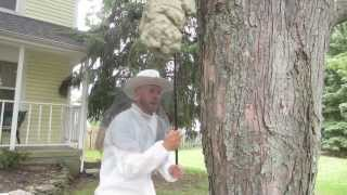 Killer Beehive Prank!! - How To Prank