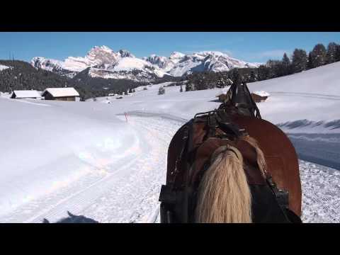 Pferdeschlittenfahrt auf der Seiseralm