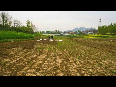 Severe spring drought hits northeast China's Liaoning Province