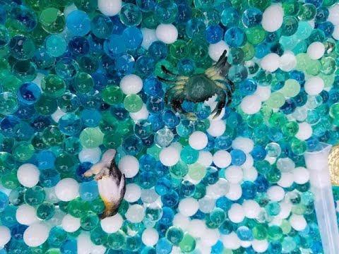 Dew Drops Water Beads Ocean Explorers Tactile Sensory Kit Review