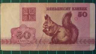 Обзор банкнота БЕЛАРУСЬ, 50 копеек, 1992 год, белочка, бона, бонистика, купюра, нумизматика, коллекц