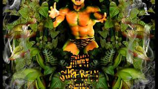 "WWF Jimmy "" superfly "" Snuka theme song Superfly ( Arena Effect )"