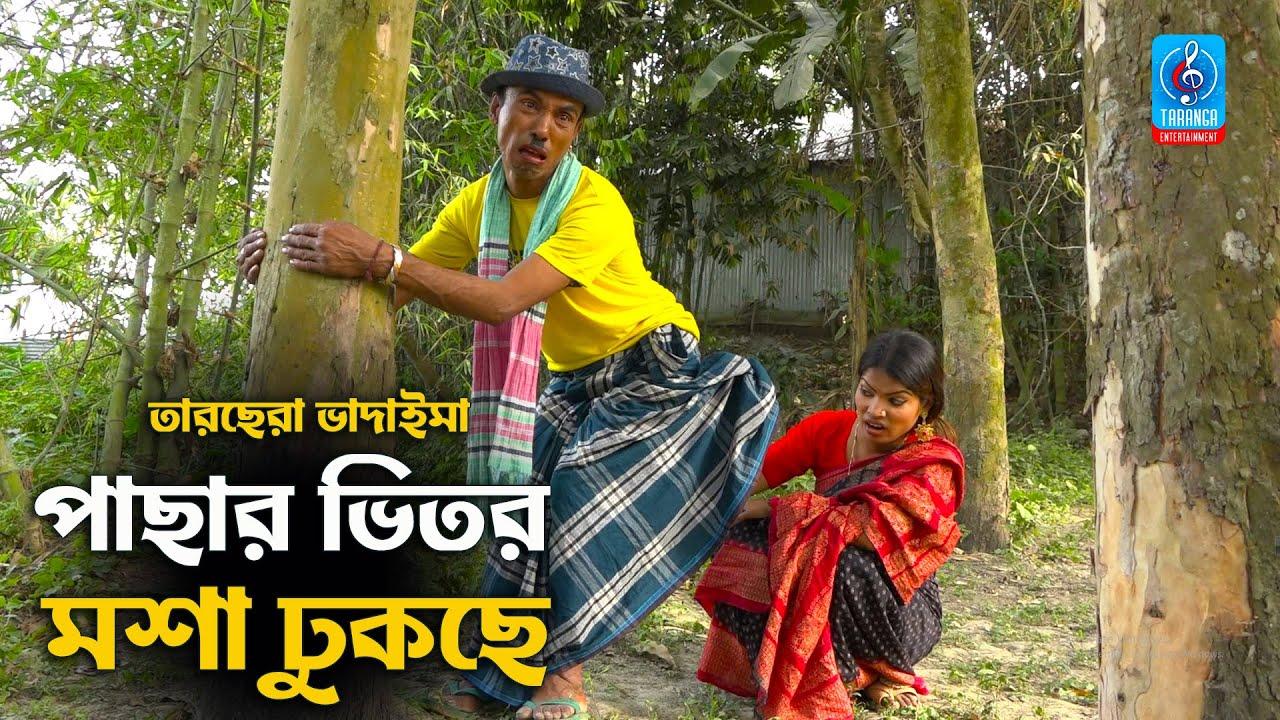 পাছার ভিতর মশা ঢুকছে | তারছেরা ভাদাইমা | Pacha Vitor Mosa Dhukche | Bangla New Comedy Koutuk 2021