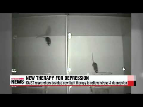 Korean researchers develop light therapy for depression   국내 연구진, 빛으로 뇌 자극해 우울증