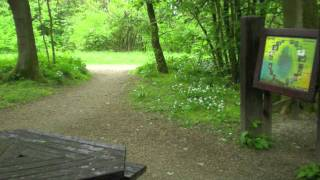 Spring Wood Picnic Site