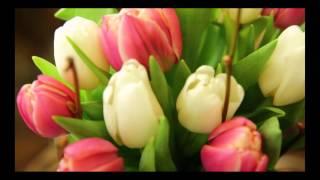 Доставка цветов и букетов по Киеву, Украине и миру. http://buket-express.ua/(, 2016-02-05T15:28:36.000Z)