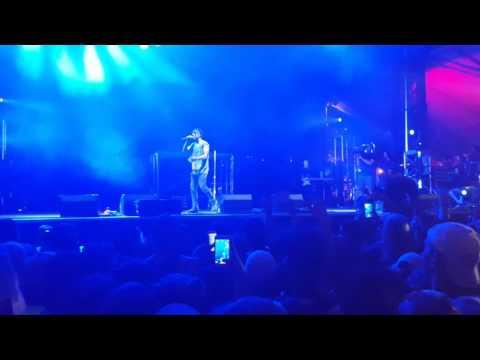 Vic Mensa - Shades Of Blue Live (Lollapalooza 2016)