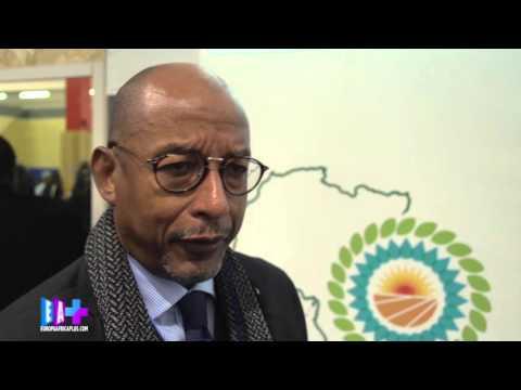 COP21 : Ce que fait le NEPAD