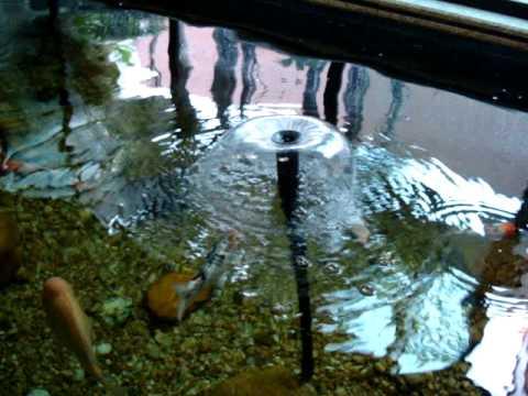 Filtro biol gico para cria o de peixes youtube for Filtros para estanques de jardin