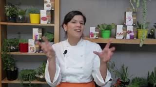 Receitas Criativas Dietkal com a Chef Vivi Araújo