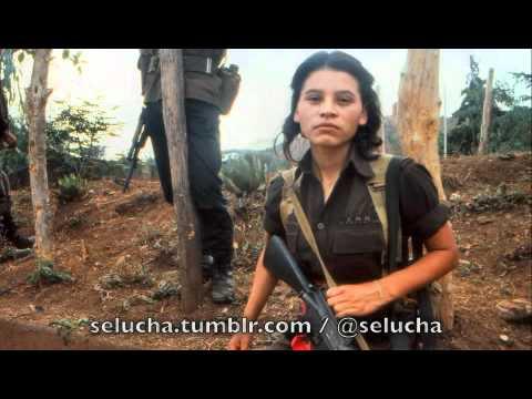 Lloviznando Cantos - Mariposa de El Salvador