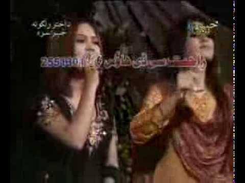 Download pashto song meena ba maney janana meena ba mane ( Haseeba Naz Pashto)