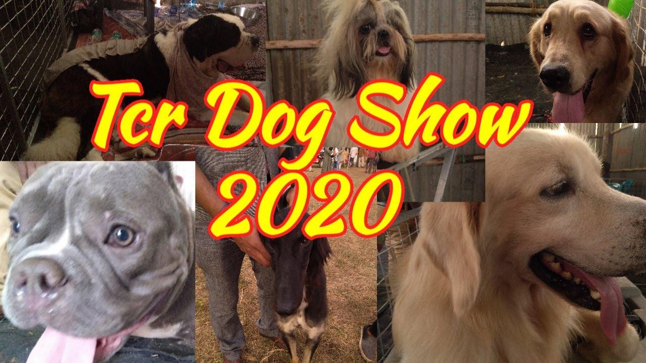 Thrissur Dog Show 2020 #Manuthy #Josh Garden