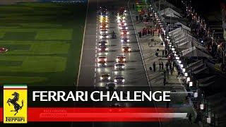 Ferrari Challenge North America – Daytona 2020, Race 2