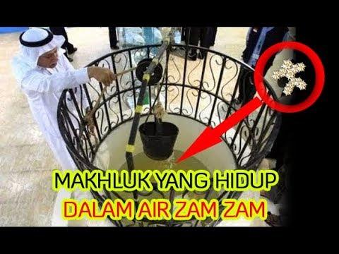 Berita Islami Sekarang