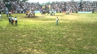 Rural del Prado 2013 ( jineteadas ) 2/2
