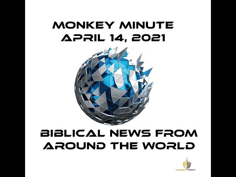Monkey Minute 4 14 21