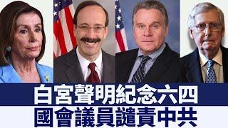 白宮聲明紀念六四 國會議員譴責中共|新唐人亞太電視|20200608