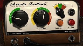 Acoustic Feedback