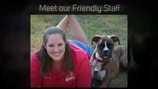 Dog Training Columbia Sc | Any Age, Any Breed