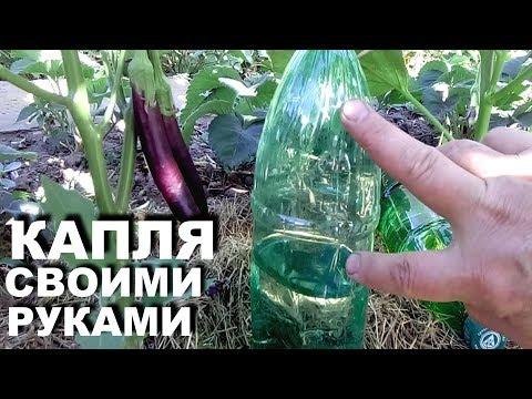 Капельный полив из пластиковых бутылок своими руками   Два разных способа