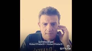 Robert P.  Scheiss egal im Style von Wolfgang Petry 🎤🎶🎵🍻