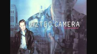 Watch Aztec Camera Birds video