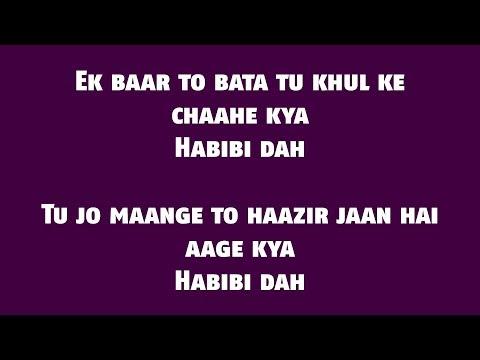 The Naari Naari (Lyrics HD) - Made In China    Vishal Dadlani
