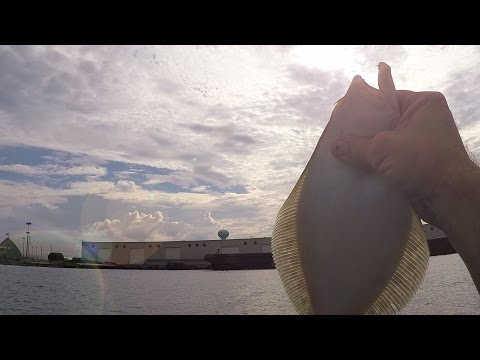 Kayak Fishing for Big Fish!! (Port Wall, Morehead City NC)