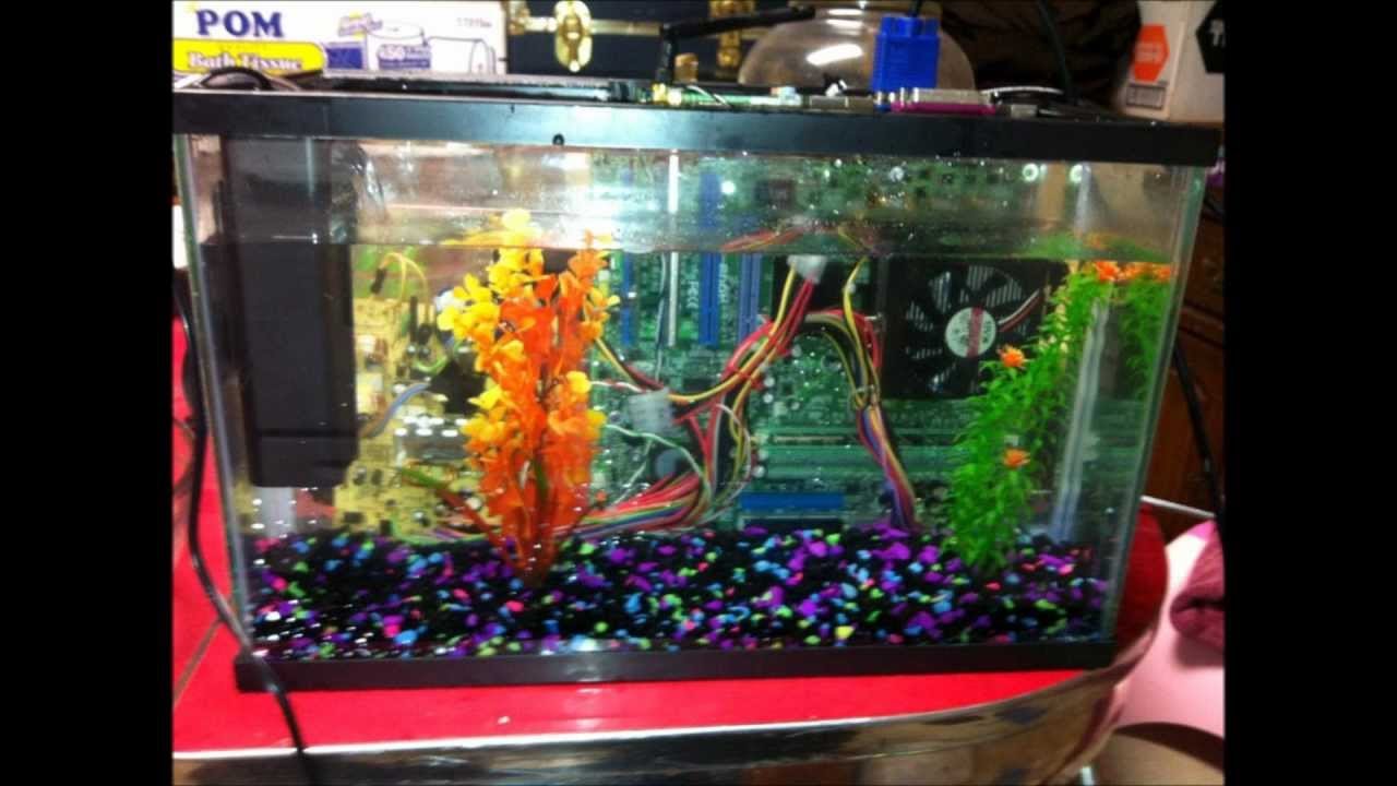fish tank computer mineral oil youtube