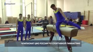 2017 02 01 HD Чемпионат России ЦФО по гимнастике среди мужчин