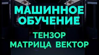 Математика машинного обучения   Вектор, матрица, тензор
