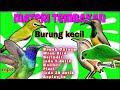 Suara Masteran Tembakan Kombinasi Suara Tembakan Burung Burung Kecil  Mp3 - Mp4 Download