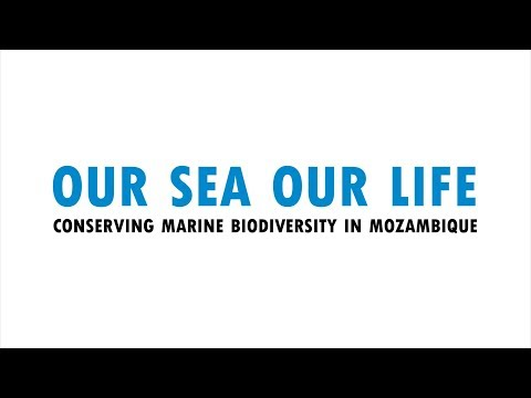 Our Sea Our Life: Marine conservation in Mozambique