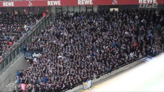 Nordkurve Gelsenkirchen: 1.FC Köln - FC Schalke 04