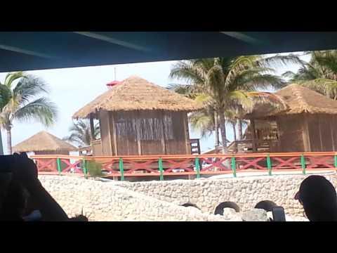 Bahamas coconut island