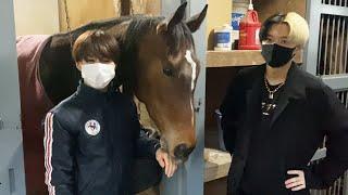 【馬主デビュー】地元兵庫で馬のオーナーになります
