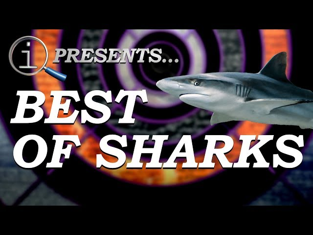 QI Compilation: Best Of Sharks