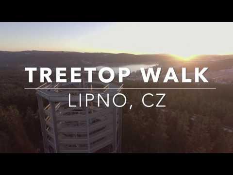 Bizarre Structures - Lipno Treetop Walk (CZ)