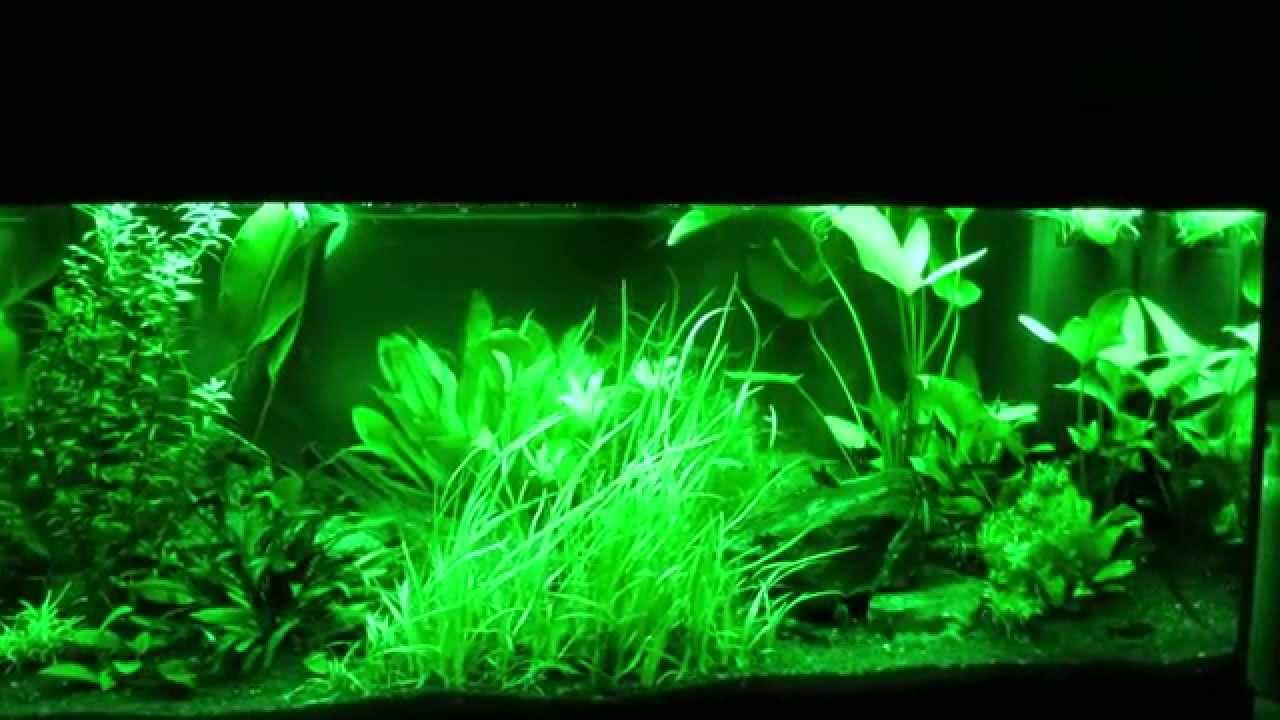 mingdak led aquarium licht kit f r aquarium unterwasser tauchkristallglas leuchten geeignet. Black Bedroom Furniture Sets. Home Design Ideas