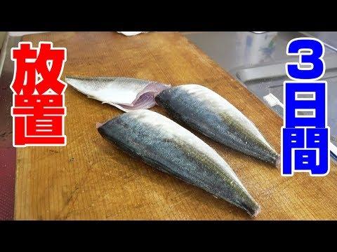 「釣り具屋さん」に聞いたアジの食べ方が新し過ぎた‼